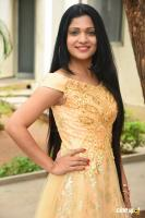 Katyayani Sharma at Trap Movie Trailer Launch (9)