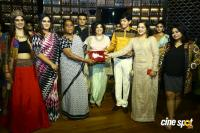 Apsara Reddy in Association with Park Hyatt Chennai Presented Limitless Love (18)