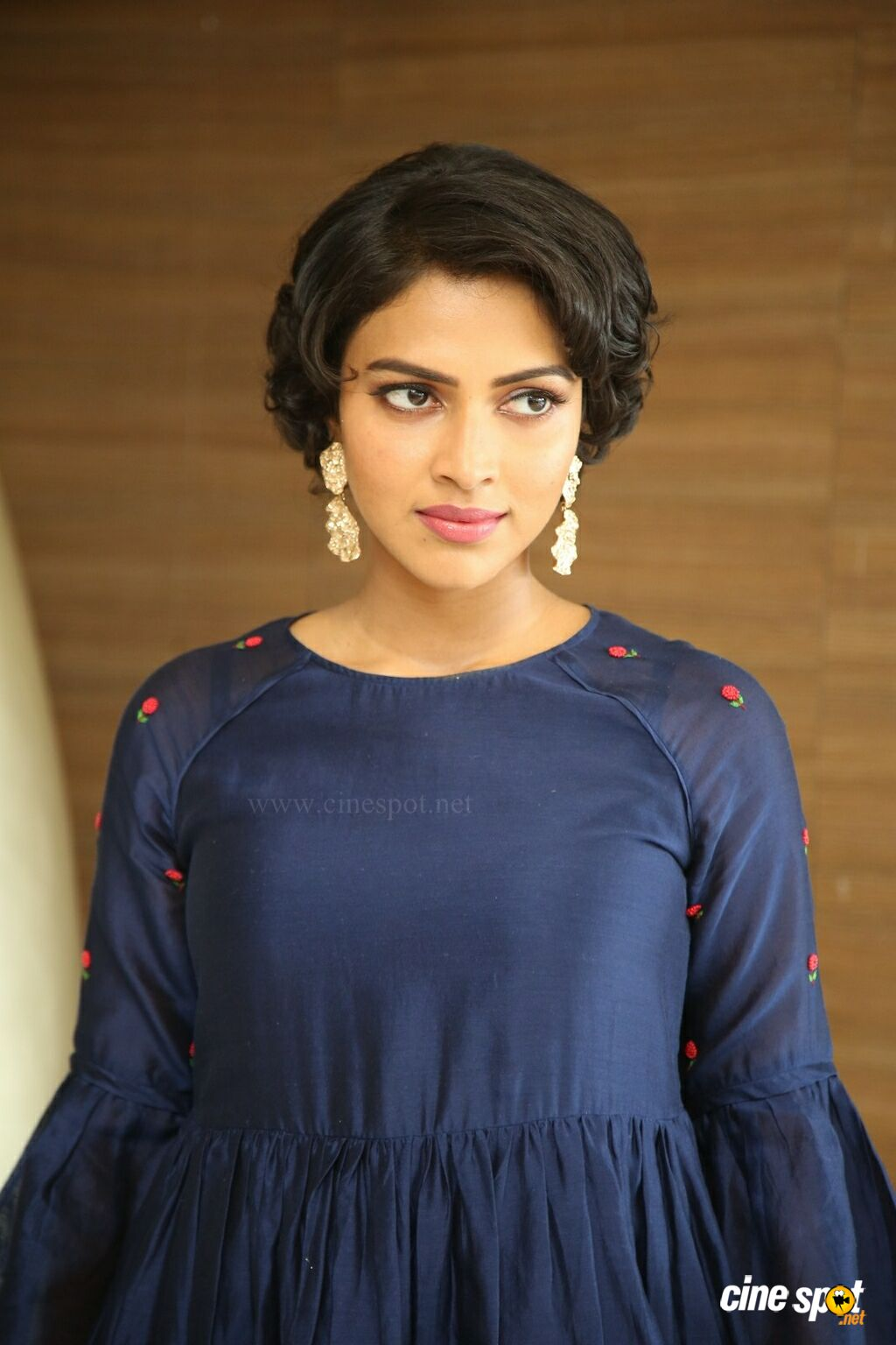 Amala Paul at Rakshasudu Success Meet (16)