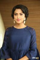 Amala Paul at Rakshasudu Success Meet (20)