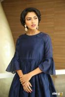 Amala Paul at Rakshasudu Success Meet (21)