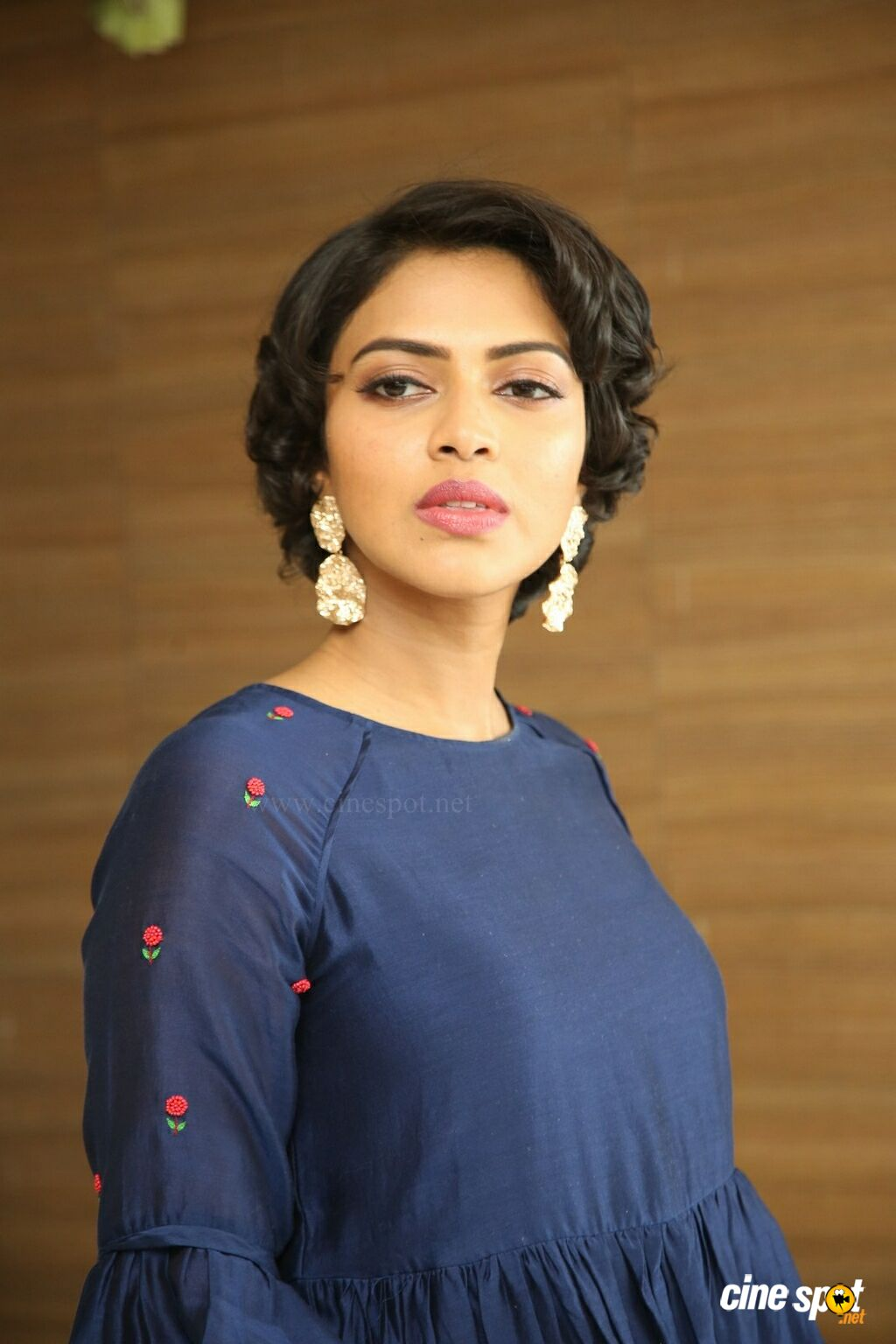 Amala Paul at Rakshasudu Success Meet (23)