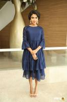 Amala Paul at Rakshasudu Success Meet (29)