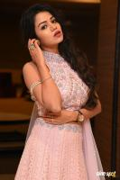 Bhavya Sri at Pandugadi Photo Studio Audio Launch (16)