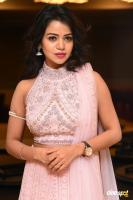 Bhavya Sri at Pandugadi Photo Studio Audio Launch (20)