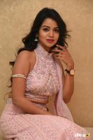 Bhavya Sri at Pandugadi Photo Studio Audio Launch (54)