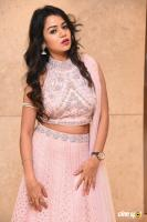 Bhavya Sri at Pandugadi Photo Studio Audio Launch (8)