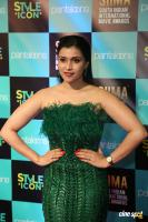 Mannara Chopra at SIIMA 2019 (4)