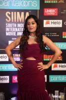 SIIMA 2019 Day 2 Photos (9)