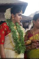 Senthil Krishna Wedding photos (23)