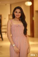 Andrea Jeremiah at Taramani Pre Release Event (9)