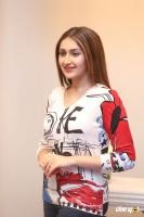 Bandobast Actress Sayesha Saigal Interview Photos (26)