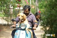 Lykka Malayalam Movie Stills (6)
