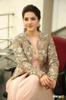 Chanakya Heroine Mehrene Kaur Pirzada Interview Photos (22)