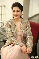 Chanakya Heroine Mehrene Kaur Pirzada Interview Photos (24)