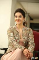 Chanakya Heroine Mehrene Kaur Pirzada Interview Photos (32)