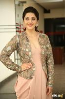 Chanakya Heroine Mehrene Kaur Pirzada Interview Photos (45)