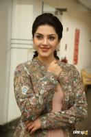 Chanakya Heroine Mehrene Kaur Pirzada Interview Photos (7)