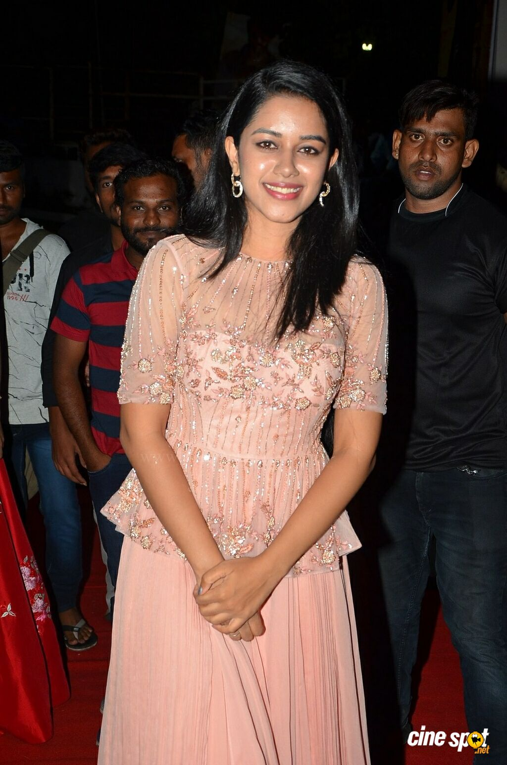 Mirnalini Ravi at Gaddala Konda Ganesh Success Celebrations (1)