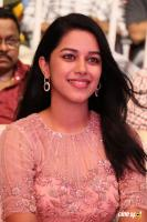 Mirnalini Ravi at Gaddala Konda Ganesh Success Celebrations (11)