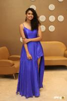 Nithya Naresh at Operation Gold Fish Pre Release Event (12)