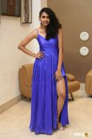 Nithya Naresh at Operation Gold Fish Pre Release Event (15)