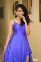 Nithya Naresh at Operation Gold Fish Pre Release Event (29)