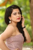 Ayesha Singh Telugu Actress Photos