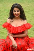Avika Gor at Raju Gari Gadhi 3 Pre Release Press Meet (24)