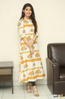Evvarikee Cheppoddu Actress Gargeyi Yellapragada Interview Photos (3)