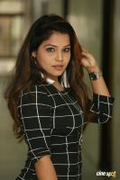 Kulkarni Mamatha at Planning Movie Press Meet (11)