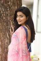 Avantika Mishra at Meeku Maathrame Cheptha Success Meet (47)