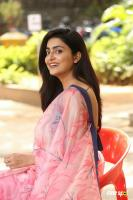 Avantika Mishra at Meeku Maathrame Cheptha Success Meet (63)