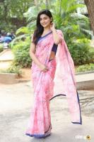 Avantika Mishra at Meeku Maathrame Cheptha Success Meet (9)