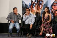 Namaste Nestama Movie Trailer Launch (18)
