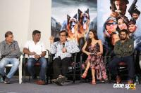 Namaste Nestama Movie Trailer Launch (22)