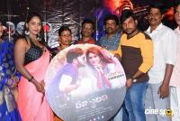 Ranasthalam Audio Launch (17)