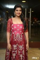 Aishwarya Rajesh at Mismatch Pre Release Event (25)