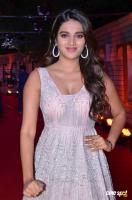 Nidhhi Agerwal at Zee Telugu Cine Awards 2020 Red Carpet (5)