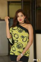 Sravani Nikki at Life Anubhavinchu Raja Success Meet (4)