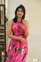 Pragathi Yadhati at Screenplay Movie Press Meet (30)