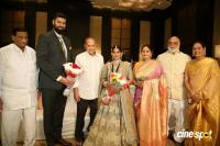 Jayasudha Son Nihar Kapoor Wedding Reception Photos