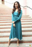 Ritu Varma at Kanulu Kanulanu Dochayante Success Meet (3)