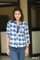 Payal Rajput at 5ws Movie First Look Launch (5)
