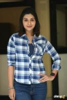 Payal Rajput at 5ws Movie First Look Launch (8)