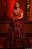 Prachi tehlan marriage photos (10)