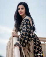 Priya anand in saree photos (2)