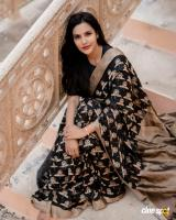 Priya anand in saree photos (4)