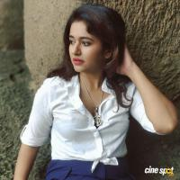 Actress Poonam Bajwa Photos (12)