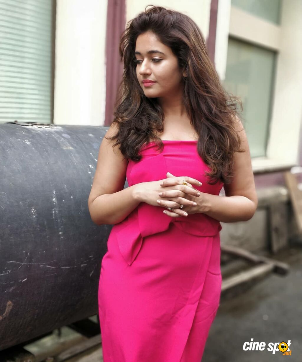 Actress Poonam Bajwa Photos (54)